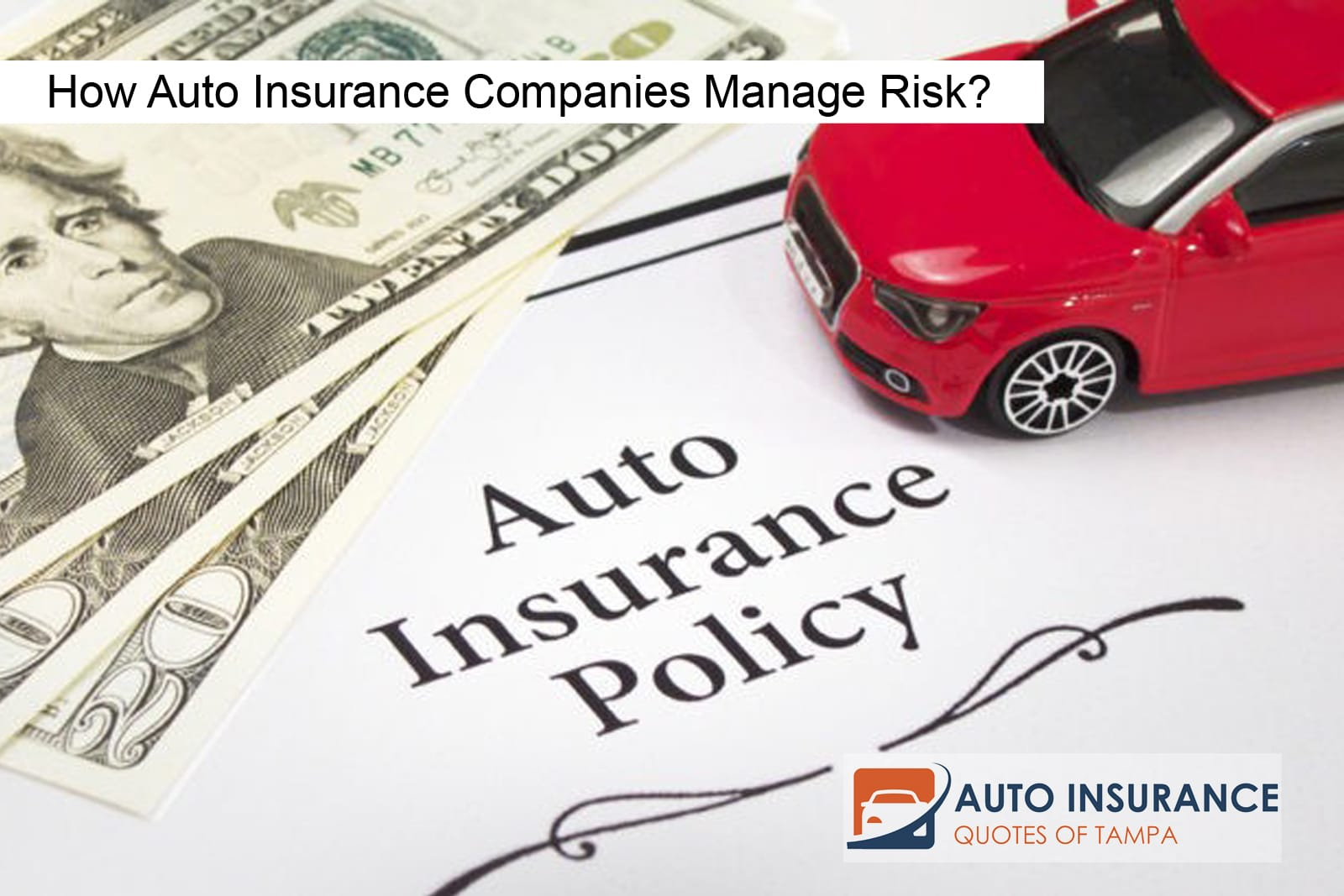 How Auto Insurance Companies Manage Risk?